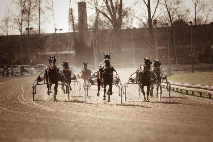Ett par hästar med sulky som tränar inför ett race i ATG